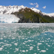Aialik glacier, Kenai Fjords NP, Alaska — Stock Photo