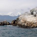 Resurrection Bay in Alaska — Stock Photo