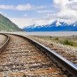 Railroad tracks running through Alaskan landscape — 图库照片