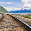Foto de Stock  : Railroad tracks running through Alaskan landscape