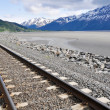 Stock Photo: Railroad tracks running through Alaskan landscape