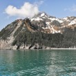 Resurrection Bay in Alaska — Stock Photo #17681623
