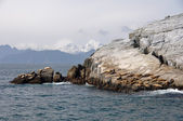 Resurrection Bay in Alaska — Stock Photo