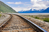 Railroad tracks running through Alaskan landscape — Stock Photo
