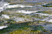 Nervion river source, North of Spain — Stock Photo