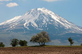 Mount Hasan (Turkey) — Stock Photo