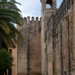 Walls of the Alcazar of Cordoba (Spain) — Stock Photo