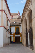 Alley in front of the Museum of Fine Arts, Cordoba (Spain) — Stock Photo