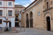 Potro square and Museum of Fine Arts, Cordoba (Spain) — Stock Photo
