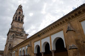 Tower of Alminar, Mezquita-Catedral of Cordoba (Spain) — Foto Stock