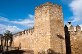 City walls of Cordoba, Andalusia (Spain) — 图库照片