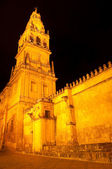 Tower of Alminar at night, Mezquita-Catedral of Cordoba (Spain) — 图库照片