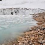 Glacier of Mount Edith Cavell, Jasper National Park (Canada) — Stock Photo #30308065