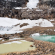Pond and glacier, Mount Edith Cavell, Jasper NP (Canada) — Stock Photo #30308127