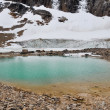 Pond and glacier, Mount Edith Cavell, Jasper NP (Canada) — Stock Photo #30308131