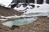 Pond and glacier, Mount Edith Cavell, Jasper NP (Canada) — Stock Photo