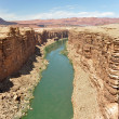Stock Photo: Marble Canyon, Colorado River in Arizona