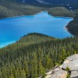 Peyto lake, Rocky Mountains (Canada) — Stock Photo