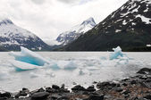 Portage lake with iceberg, Alaska — Stock Photo