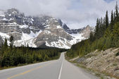 Icefields Parkway, Highway 93, Alberta (Canada) — Stock Photo