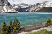 Bow Lake in Spring, Rocky Mountains (Canada) — Foto Stock