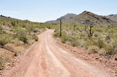 Gravel road, Organ Pipe Cactus National Park, Arizona — Stock Photo