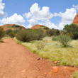 Valley of the Winds Walk, The Olgas, Australia — Stock Photo #38791809