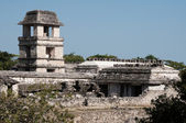 The tower of the palace,ancient Mayan city of Palenque (Mexico) — Stock Photo