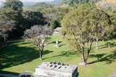 Archaeological site of Bonampak, Chiapas (Mexico) — Stock Photo