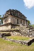 Archaeological site of Yaxchilan, Chiapas (Mexico) — Stock Photo