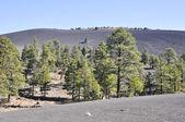 Sunset Crater Volcano National Monument, Arizona — Stock Photo