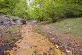 Entzia mountain range, Alava (Spain) — Photo