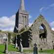 St Marys Parish Church, Athenry, Ireland — Stock Photo #46137303