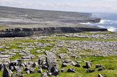 Cliffs near Dun Aengus, Inishmore, Aran islands in Ireland — Stock Photo
