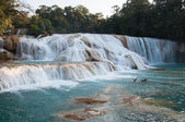 Agua Azul waterfalls, Chiapas, Mexico — Stock Photo