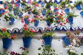 Festival of the Courtyards, Cordoba, Spain — Stock Photo