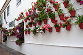 Flowerpots in Cordoba, Spain — Stock Photo