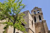 Church of San Juan Bautista, Laguardia, Alava (Spain) — Stok fotoğraf