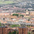 Panorama of the downtown of Vitoria, Spain — Stock Photo #46885025