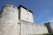 The fortified tower of Mendoza, Vitoria (Spain) — Stock Photo