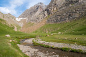 Glacial valley in Pyrenees, Spain — Stock Photo