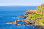 Cliffs near Giant's Causeway, Northern Ireland — Stock Photo