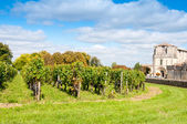 Saint-emilion, een unesco world heritage site, Frankrijk — Stockfoto