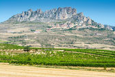 La Rioja province with Cellorigo town as background (Spain) — Stock Photo