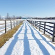 Farm in winter — Stock Photo #39523921