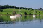 Harbor of Lunenburg — Stockfoto