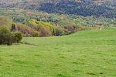 Färgglada hills — Stockfoto
