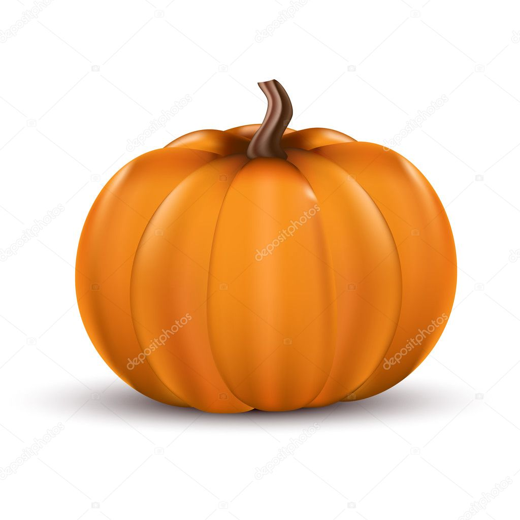 Realistic vector illustration off a pumpkin. Isolated on white. — Stock Vector #13130052