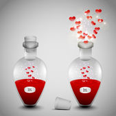 A love potion set — Stock Vector