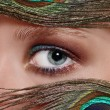 Eye and peacock's feathers — Stock Photo